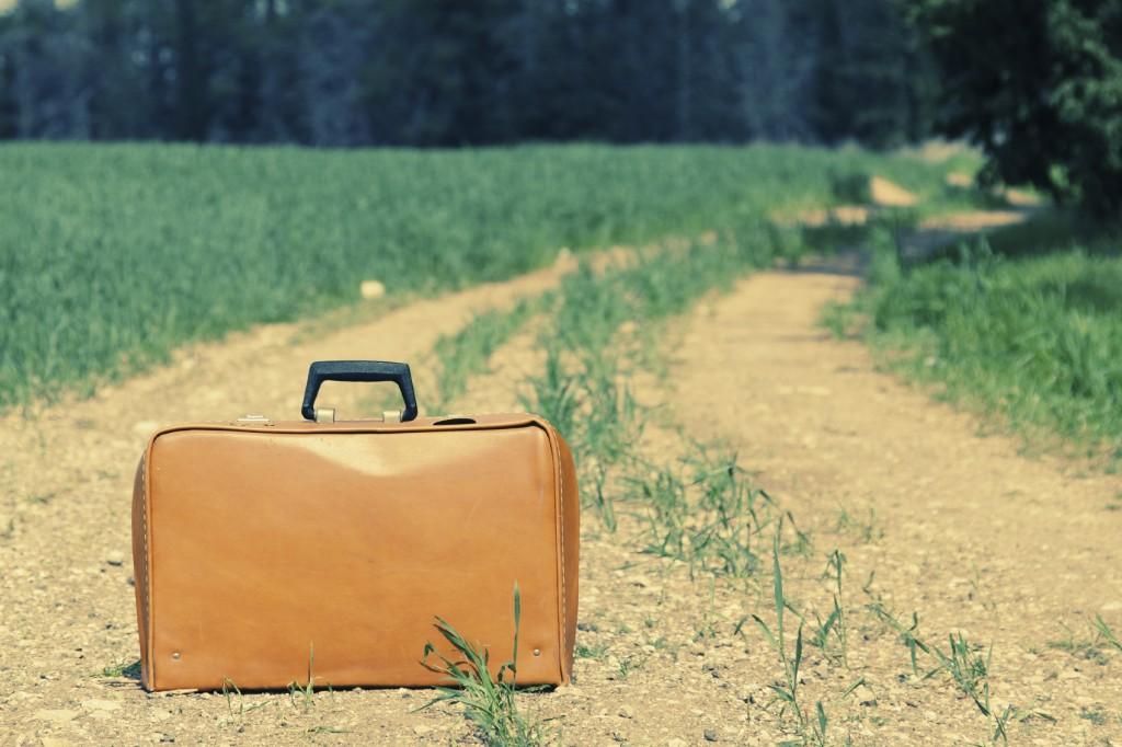 vintage case in the field