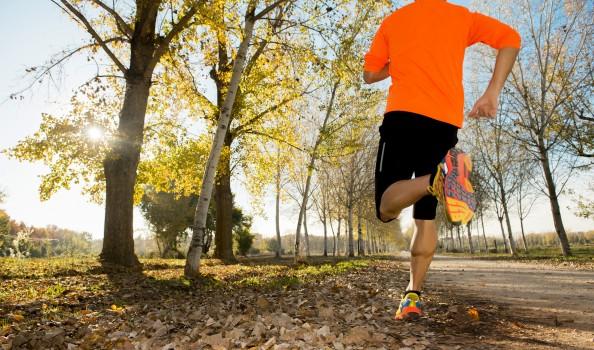 sport man running off road trees under beautiful Autumn sunlight