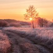 Fairy frosty winter morning