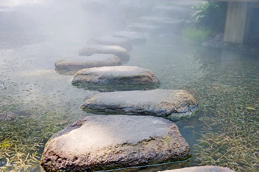 rock stepping stones across a pond